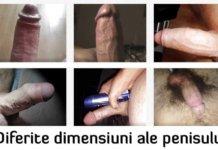 penis-dmensiune-in-functie-de-rasa